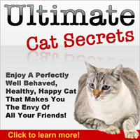 ultimate-cat-secrets-200