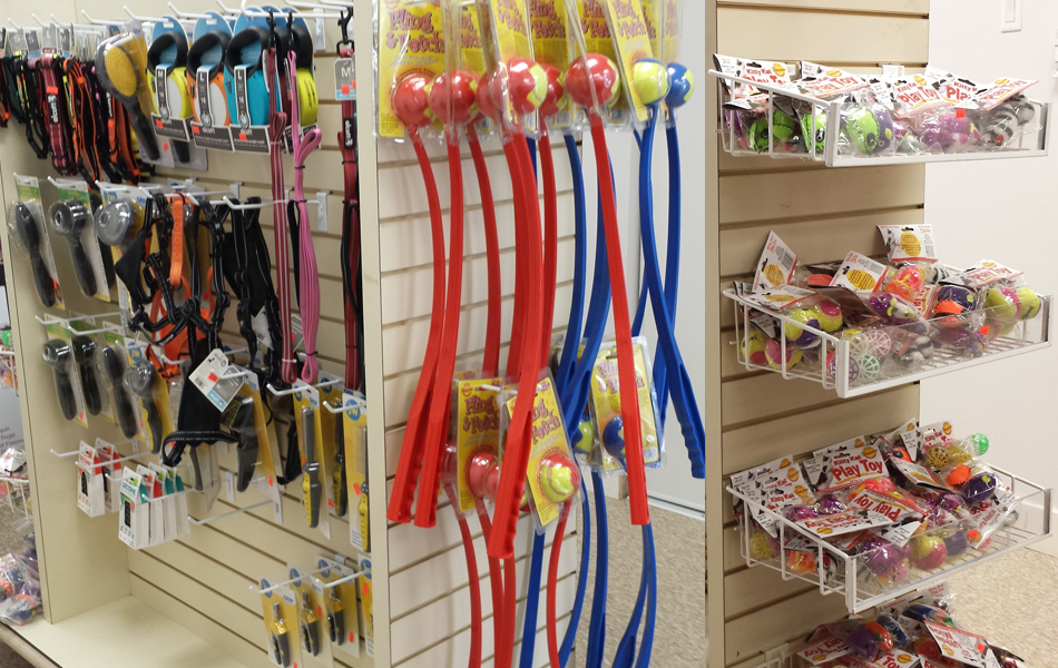 Wholesale-Pet-Food-and-Supplies-in-Mississauga-Dog-Cat-Toys-950