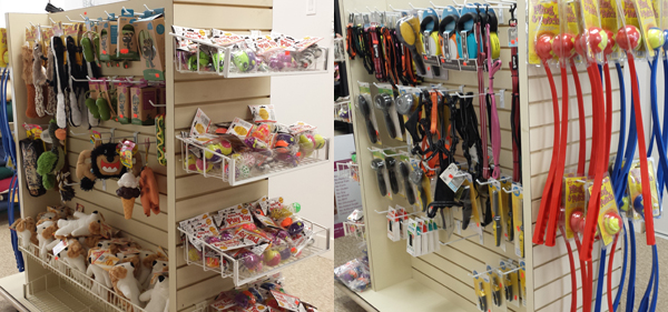 Wholesale-Pet-Food-and-Supplies-in-Mississauga-Dog-Cat-Toys-Accessories